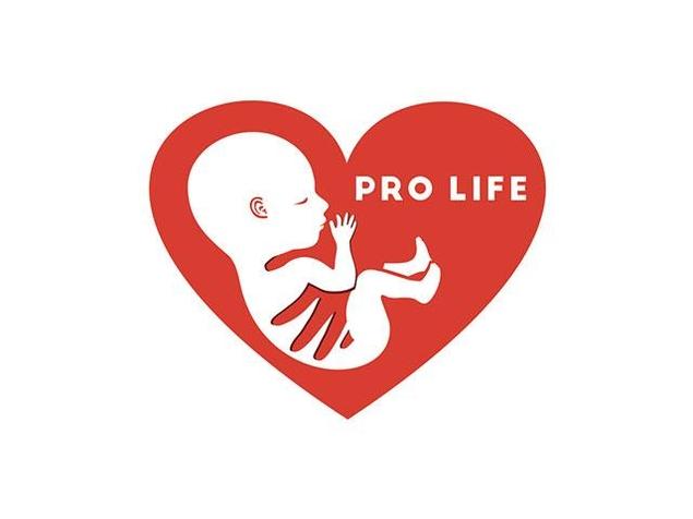 etats unis vers la fin de l 39 avortement au del de vingt semaines de grossesse coup de. Black Bedroom Furniture Sets. Home Design Ideas
