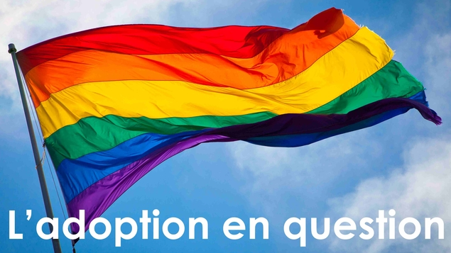 L'adoption par des couples homosexuels en question